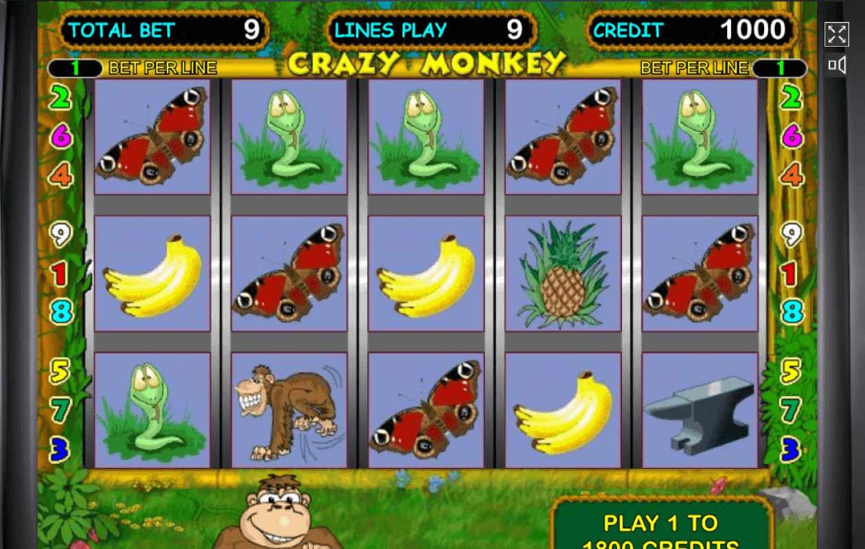 Играть i crazy monkey игровые автоматы играть бесплатное игровые автоматы в россии